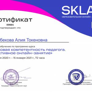 Благодарим Образовательную Онлайн — платформу SKLAD